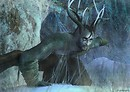 Yule ~ The Horned God rises