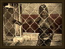 caged - Vintage Series