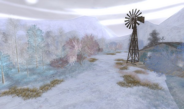Alirium snowfield