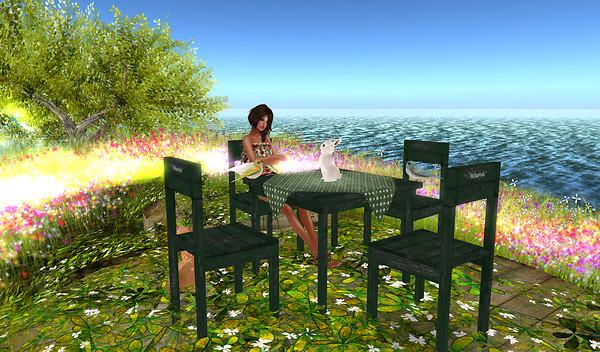 Alirium - Spring area (14)