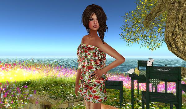 Alirium - Spring area (9)