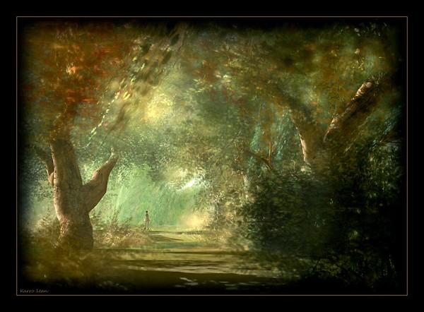 dans la forêt profonde...