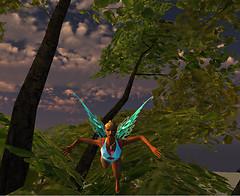 Fairy flight in Nuvera
