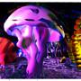 sea shroom
