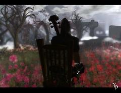 Morning lonelyness serie 1 : Sad Cello