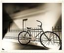 MayFair  bicycle