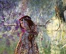 A la recherche des papillons