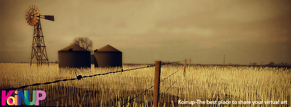 Koinup cover photo 2