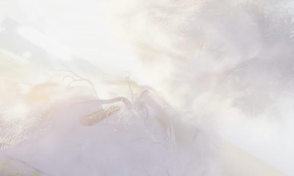 snow senescence ethereal - torley.olmstead