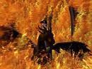 Fiery Lady II