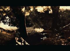 CHAKRYN_FOREST