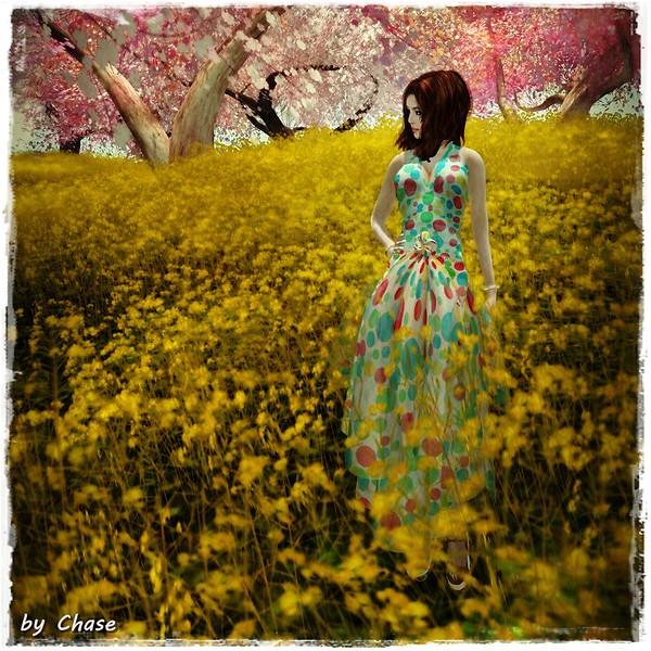 Silk in Nature 2