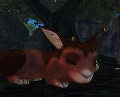 Kititas takes her new snail home way too seriously.