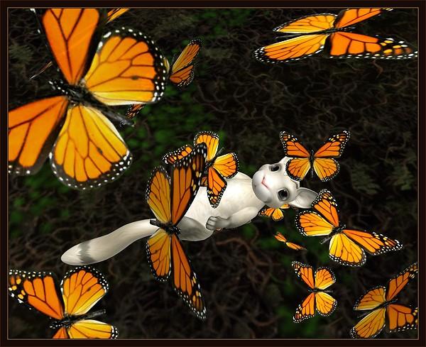 Caladium Flutters