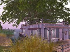 Blues & Brews houseboat