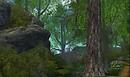 Calas April 2012_005