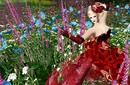 Lady Poppy