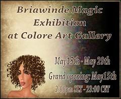 Briawinde Magic Exhibition - Colore Art Gallery