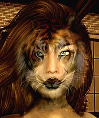 Woman or Beast