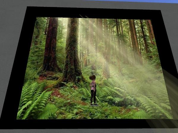 SL9B - Inside Art display - oriyn.destiny