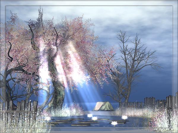 Neva River (3)