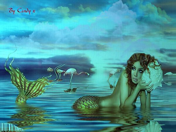 The Mermaid 1