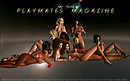 The Girls of Playmates Magazine