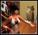 """My new pet owl """"Oscar"""""""