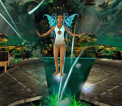 Meditation of the Fairy