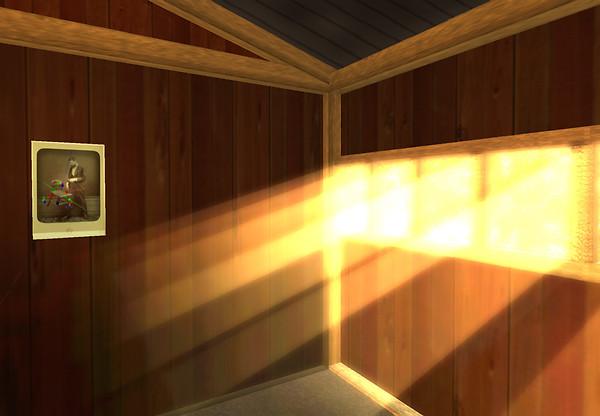 refuge winter light
