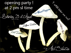 Opening party !