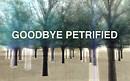 Goodbye Petrified