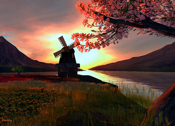 Windmill, and a Floral Sunset