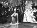 moonlight dip black and white