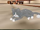 I haz KittyCats