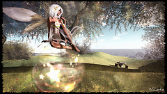 Fairy's moment