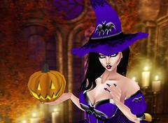 Halloween witch 2012