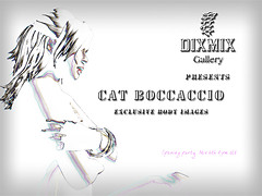 Cat Boccaccio's exhibition