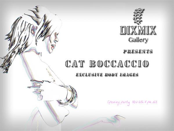 Cat Boccaccio's exhibition