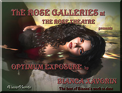 THE ROSE GALLERIES
