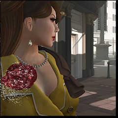 I shopped at Ann Taylor in SL