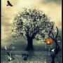 Lonely  Tree.....