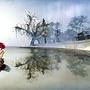 Winter Fae Reflection