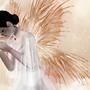 .:° Camelia - Madama Butterfly°:.