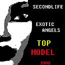 2013 EXOTIC ANGEL