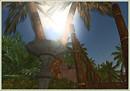 tropical garden1