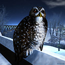 Winter Hunter 2