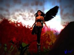 Fairy Dawn Fire .1