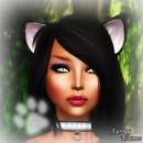 KittyCen2