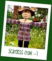 Scareless Crow